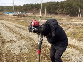 태안군,해양치유자원'피트' 대량매장 확인