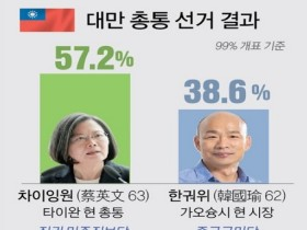 대만, 집권민주진보당 차이잉원 총통 재선 성공