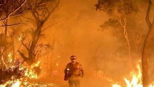 호주 산불 대재앙,3D그래픽 숯덩이 사진은 오해