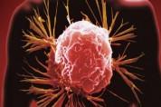 30억개 암 세포,DNA '명찰' 찾아 일망타진 성공