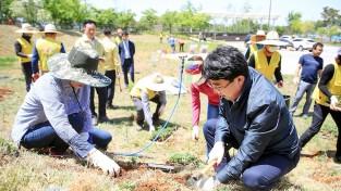 국화 꽃나무 심는 맹정호 서산시장