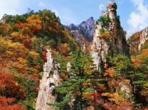 【포토】그리운 금강산,가을철 오색단풍'황홀경'