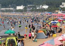 태안,올여름 관광객 221만 명 방문 31% 증가