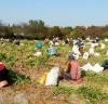 서산시 농작업 지원단,농촌인력부족 돌파구