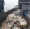 해경,불법조업 중국어선 과징금 3천만원 부과