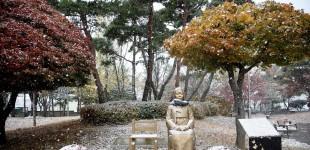 【포토】 오늘 오전 서산지역에 첫 눈 내려
